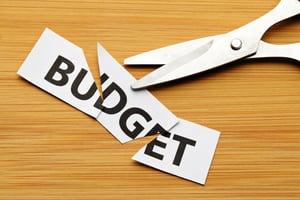 Budget cut-2